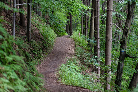 hiking-spiff-image